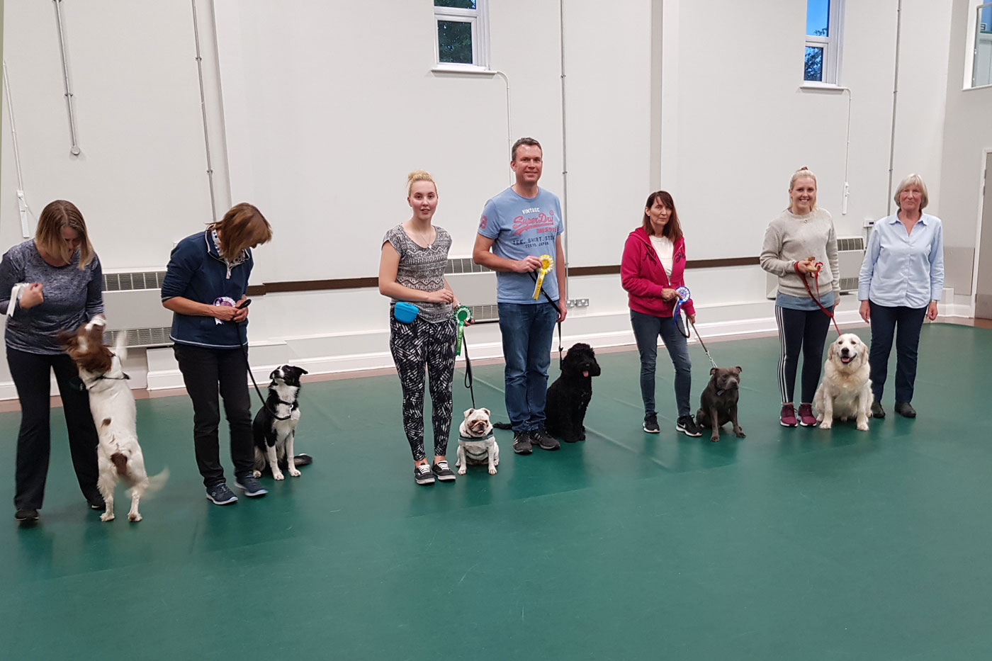 Line up for Class 1 Yearly obedience test