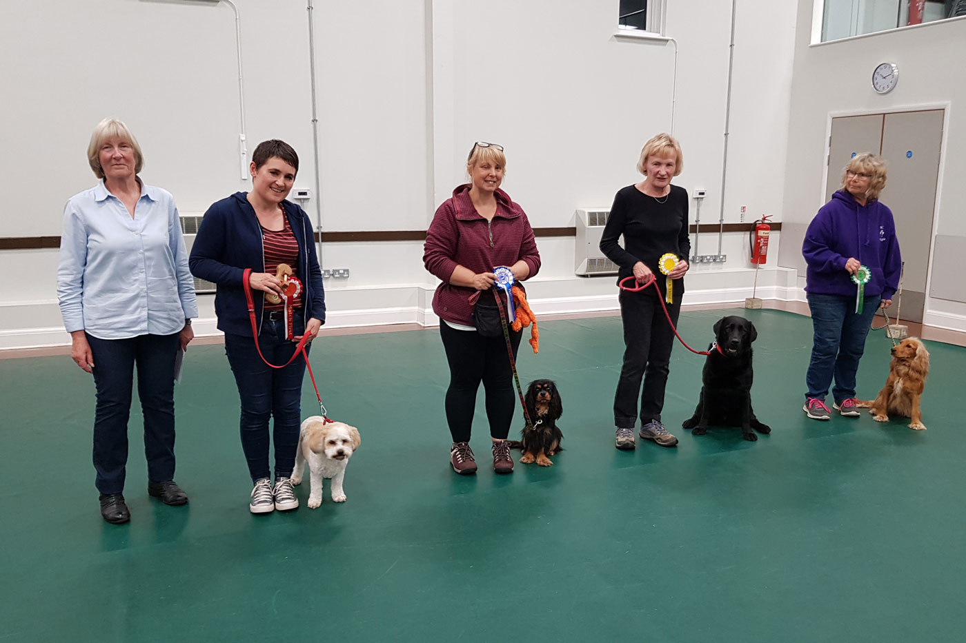 Line up for Class 3 for our yearly obedience test